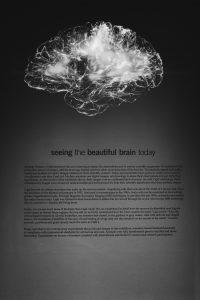 Neuroscience - brain